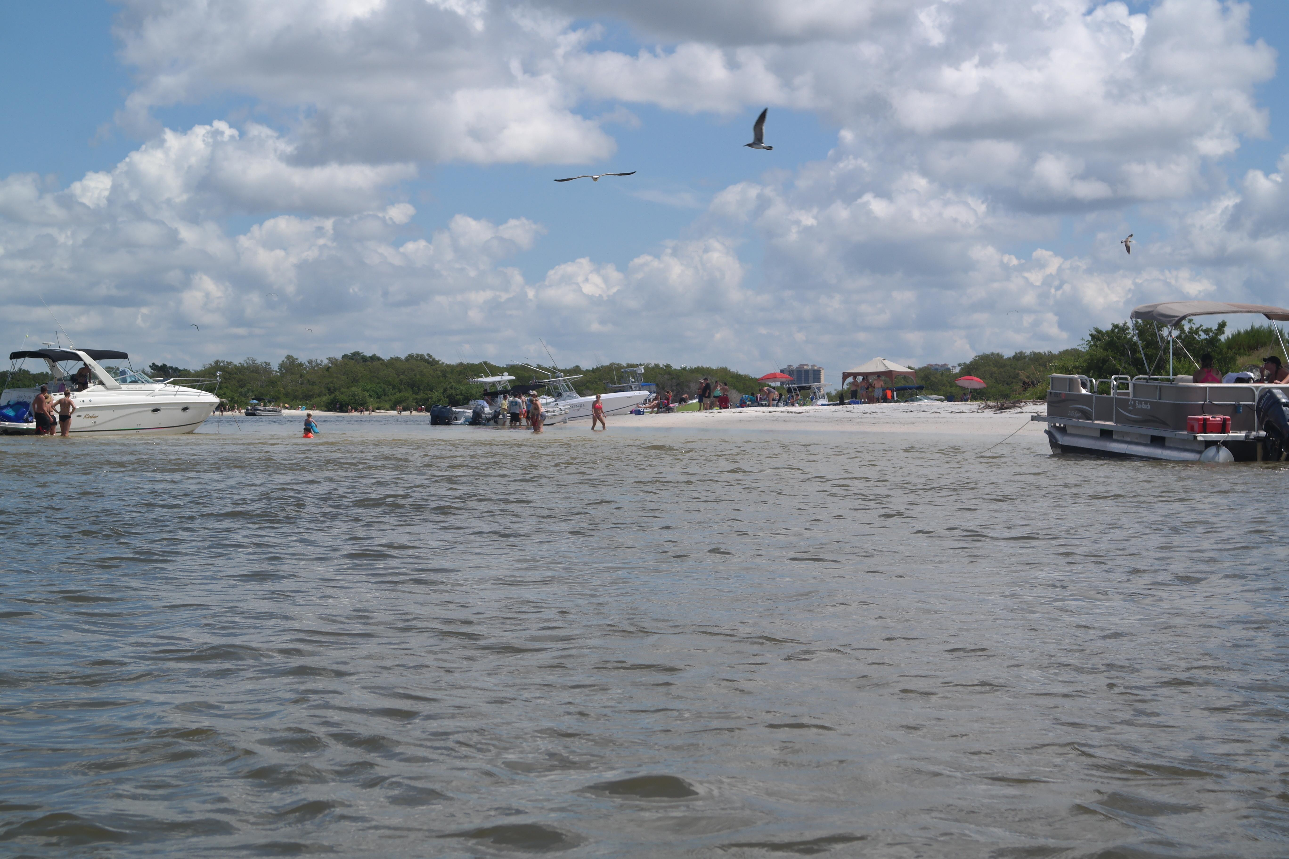 Pelican Landing Beach