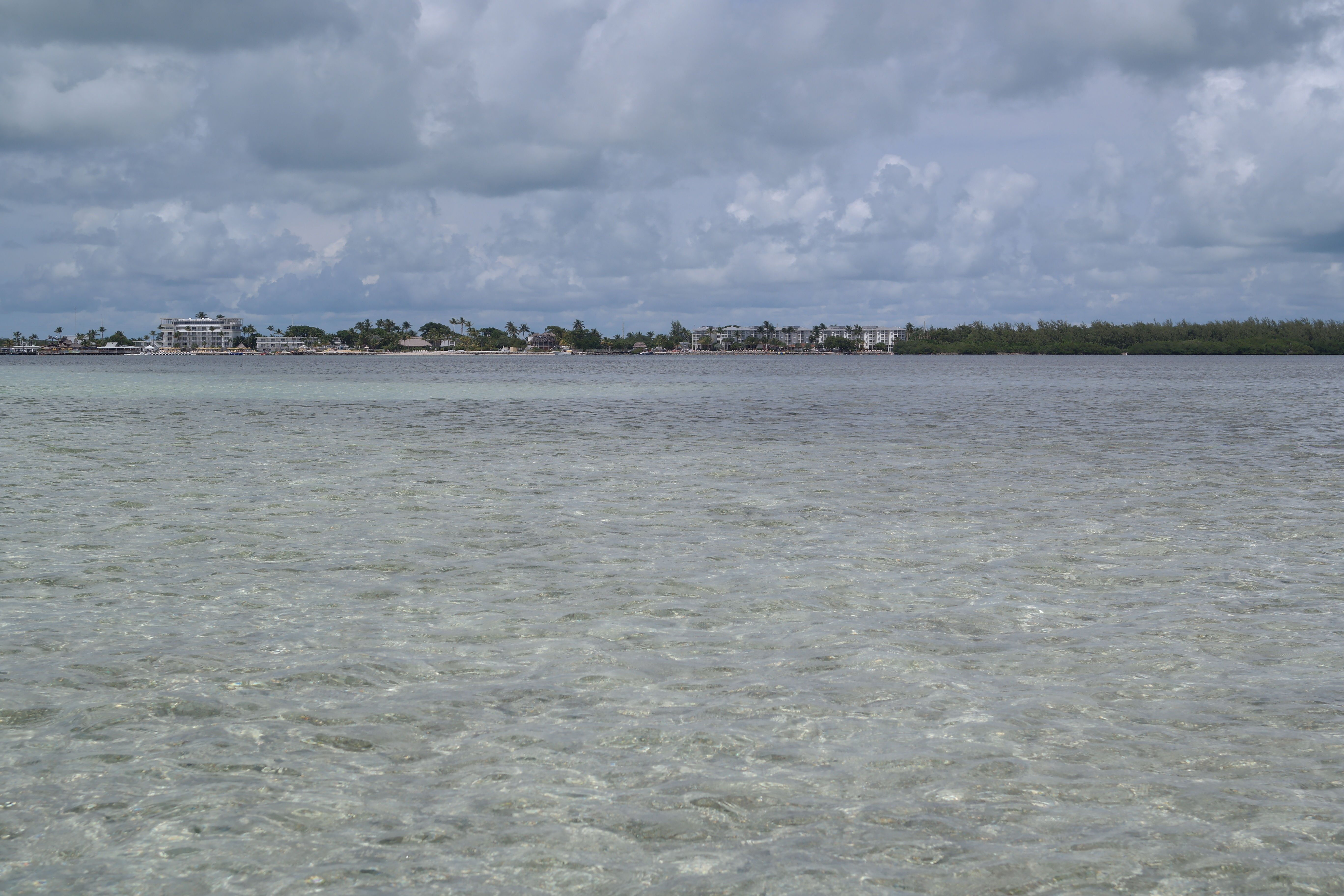 Islamorada Oceanside Waters