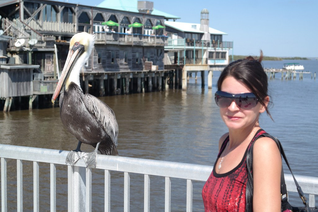 5 reasons why you should visit beautiful and historic for Cedar key fishing