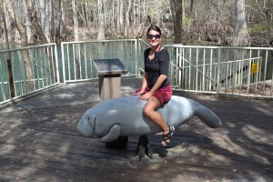 Manatee Springs Ride The Manatee