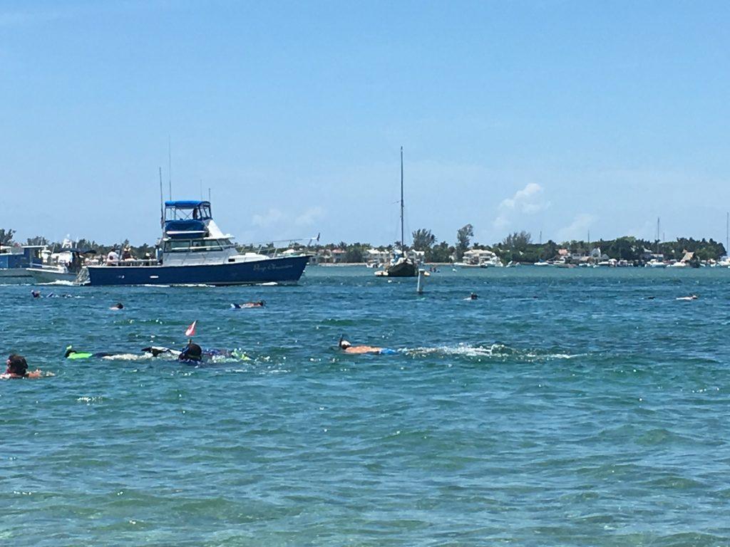 Snorkeling Phil Foster Park