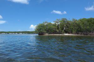 Munyon Island
