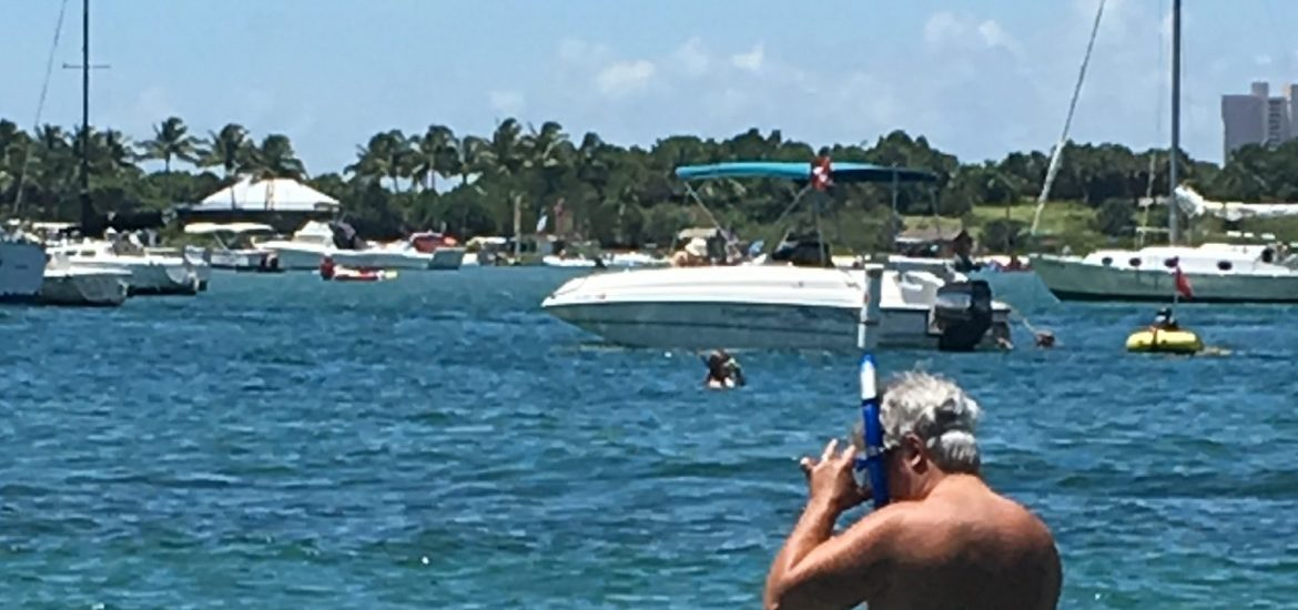 A Free And Cool Summer Snorkeling Expedition Phil Foster Park In Palm Beach County